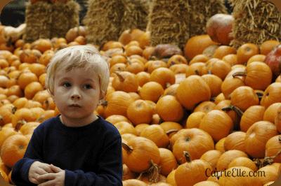 Pumpkin Fun at the Dallas Arboretum