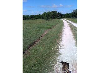 Country Roads…Take Me Home…