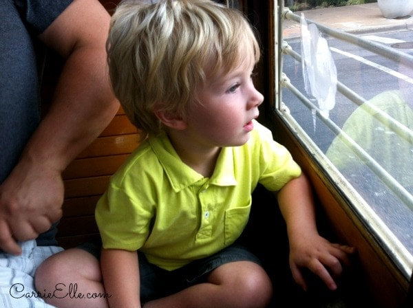 Jack peers out the window of the M-Line trolley.