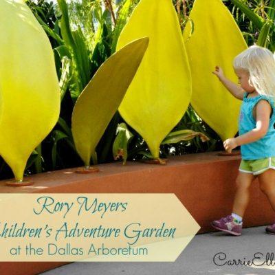 Rory Meyers Children's Adventure Garden at the Dallas Arboretum