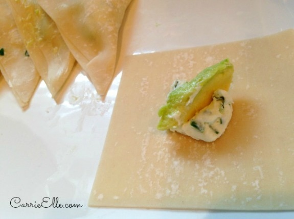Avocado Wonton Wrapper