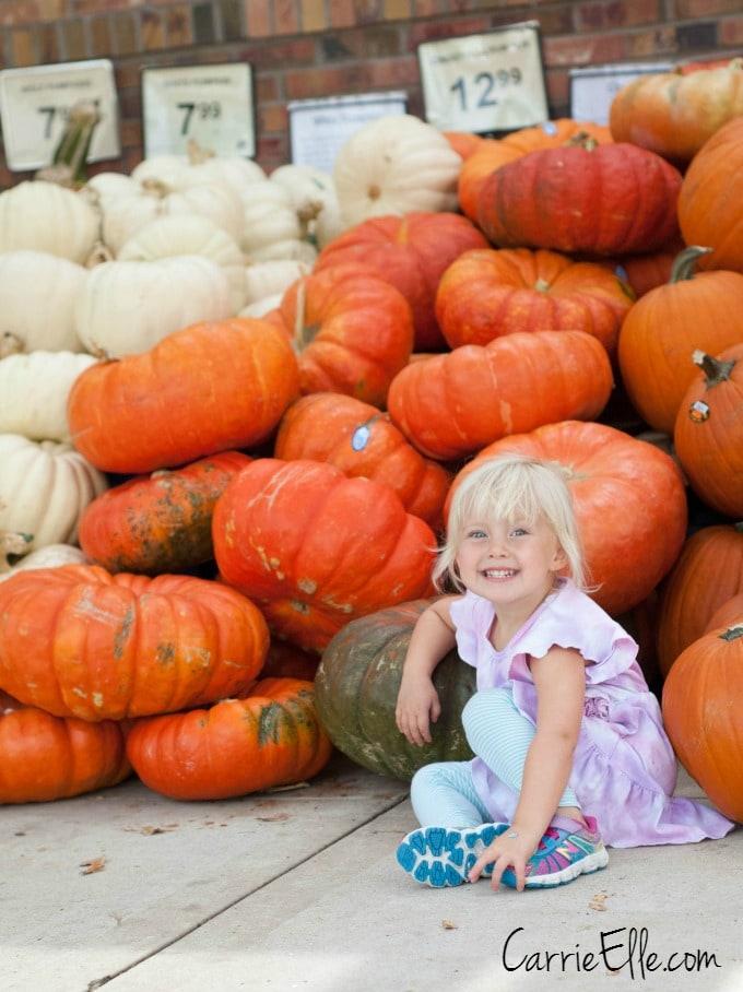 Market Street Pumpkins