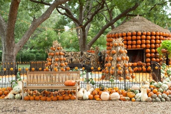 Pumpkin Village