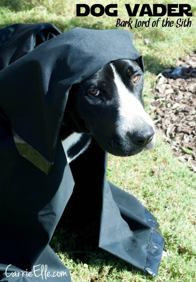 Dog Vader #shop