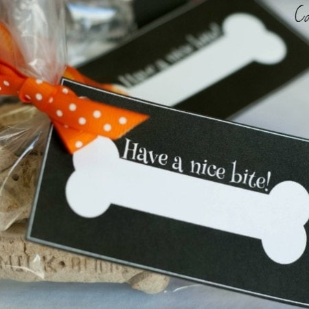 Treat Labels #shop