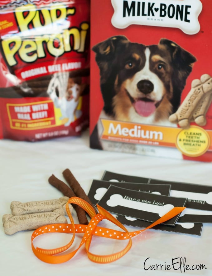 Trick-or-Treat Bags for Pets #shop
