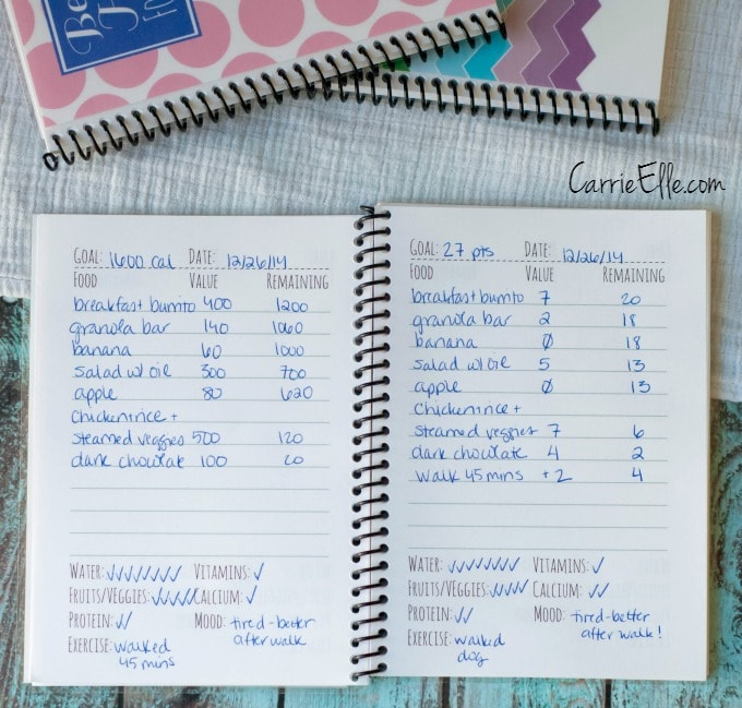 photo about Printable Weight Watchers Journal titled Food items Publications (Depend Energy, Keep track of Excess weight Watchers Facts