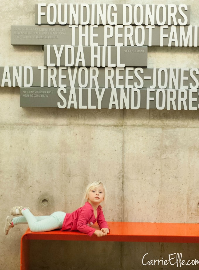 Perot Musem Claire