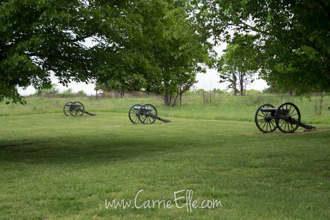 Cannons at Bloody Hill