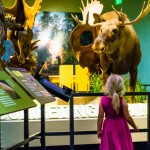The Best Time to Visit the Perot Musem (and…How to Get a Free Kid's Ticket!)