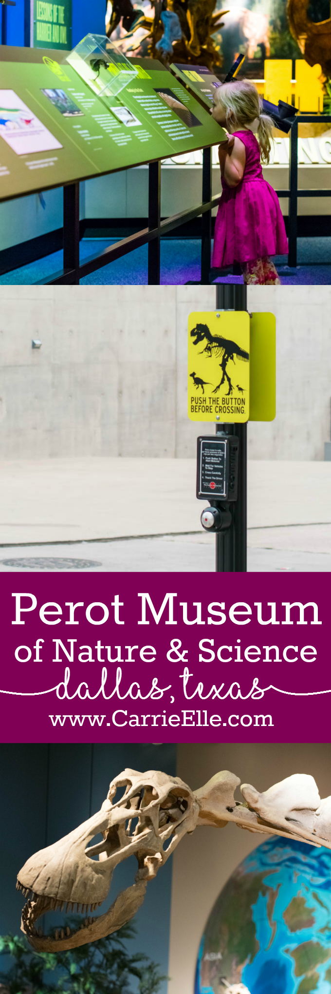 Perot Museum Dallas