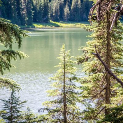 5 Things to Do with Kids in Oregon