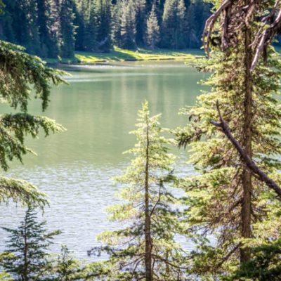 Todd Lake