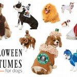 Best Dog Costumes
