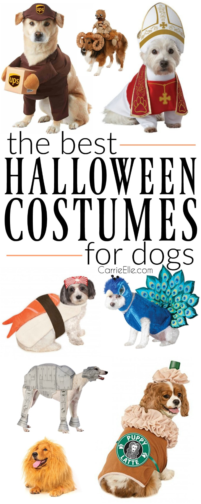 Best Dog Costumes - Carrie Elle
