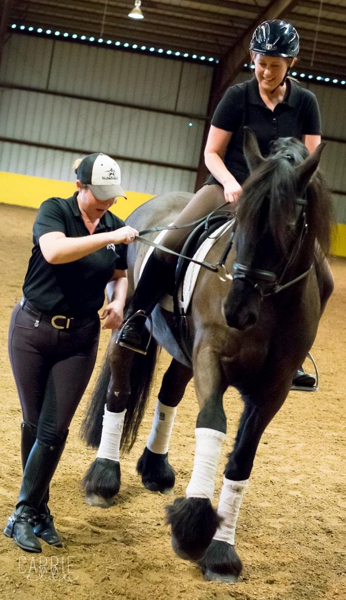 Black Star Sport Horses