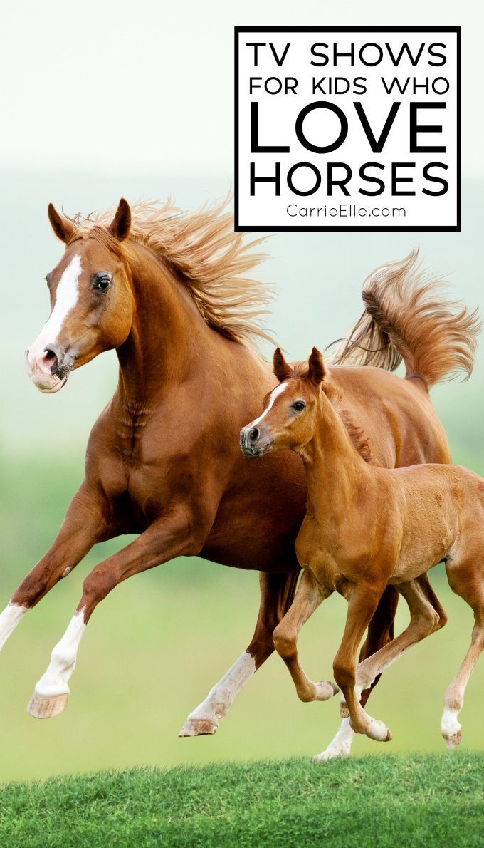 Horse TV Shows for Kids