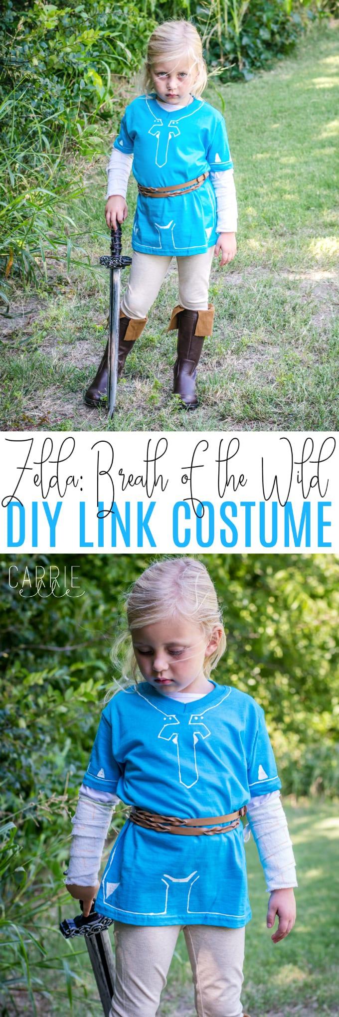 DIY Link Costume