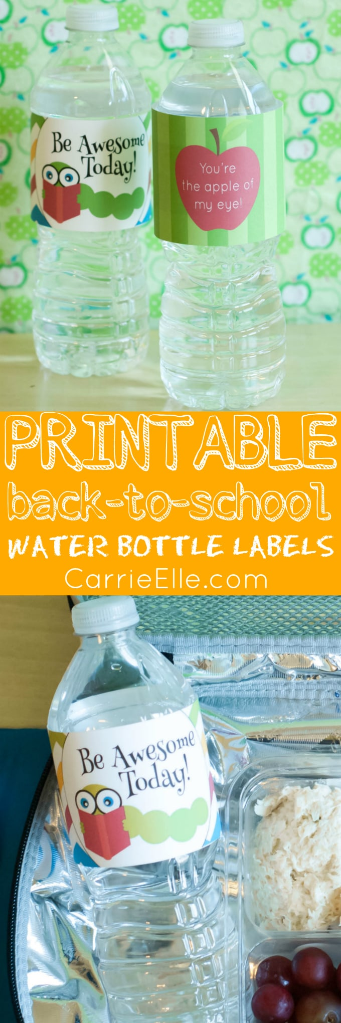 Printable Back-to-School Water Bottle Labels