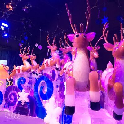 Plan Your Trip to ICE! at the Gaylord Texan
