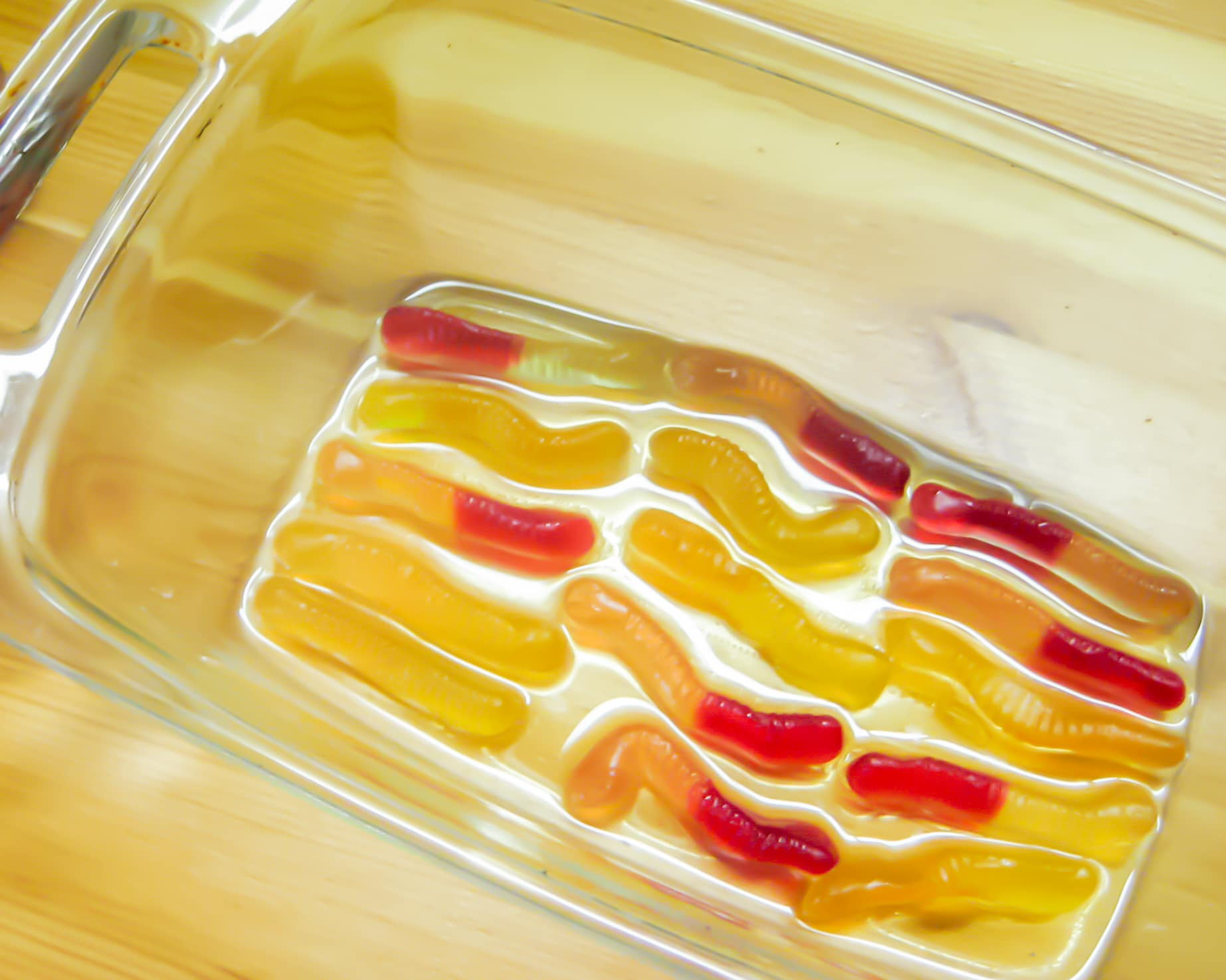 Gummy worms soaking in tequila