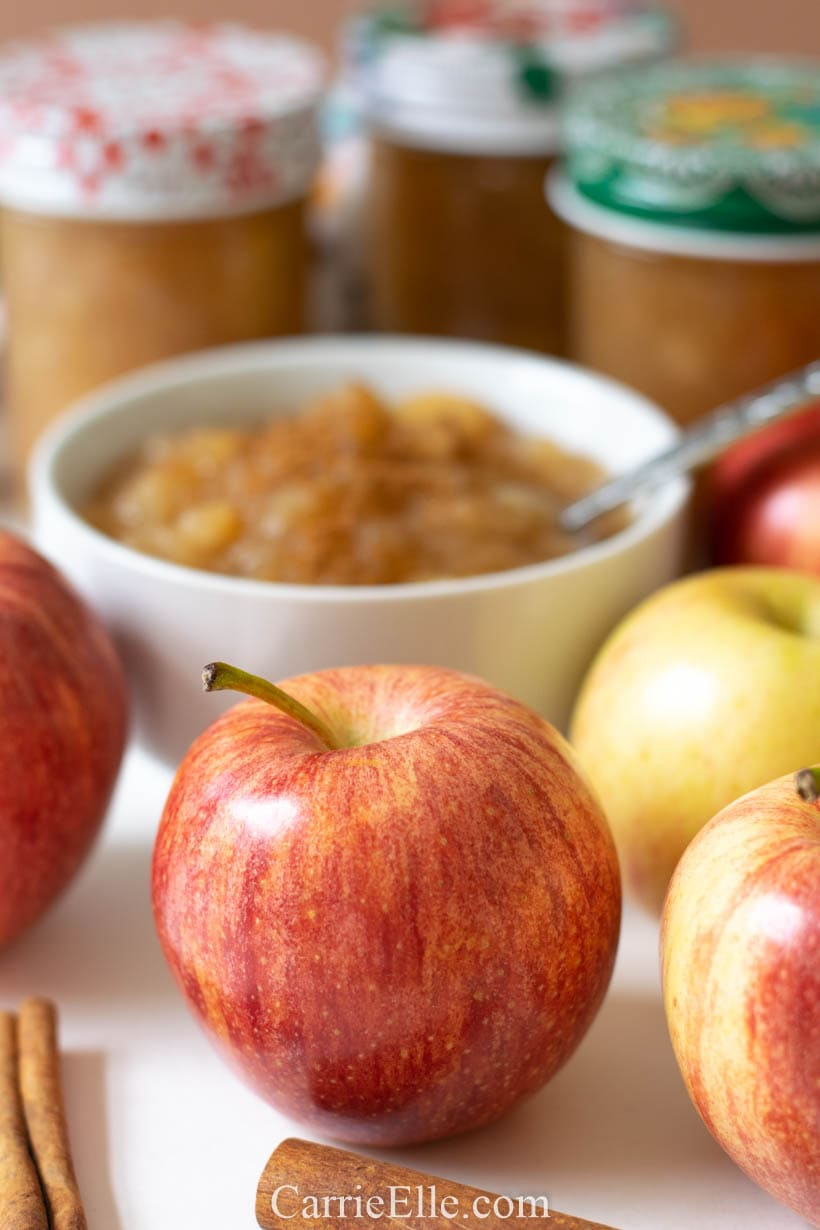 21 Day Fix Homemade Applesauce