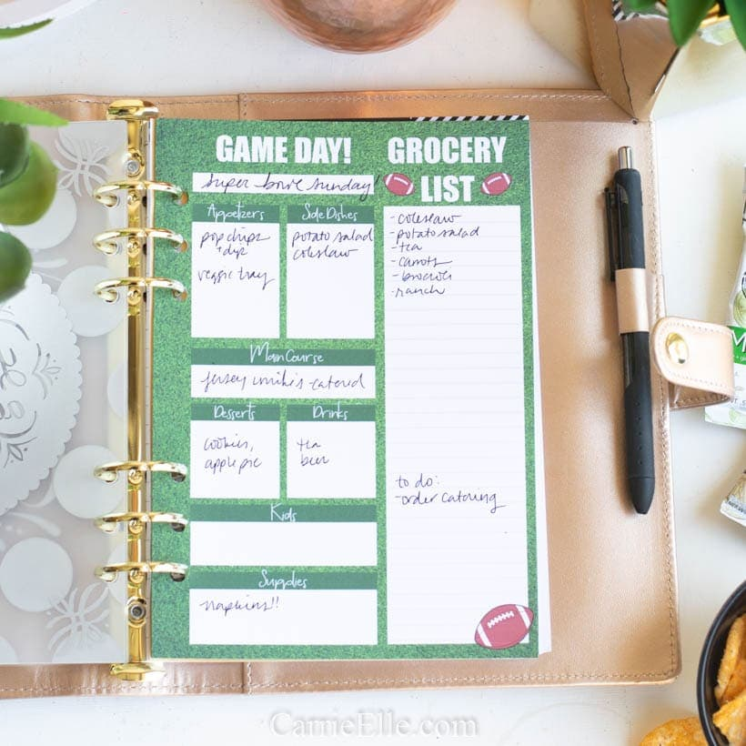 Printable A5 Planner Insert Football Party