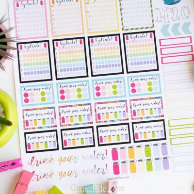 Girl, drink your water! Printable Hydration Planner Stickers