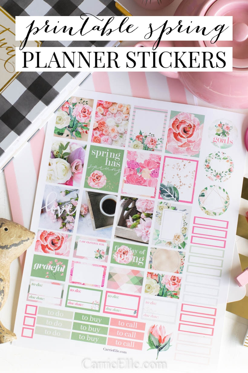 photo relating to Spring Printable named Printable Spring Planner Stickers - Carrie Elle