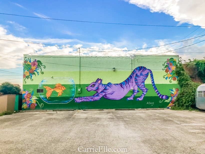 Brownwood TX Mural