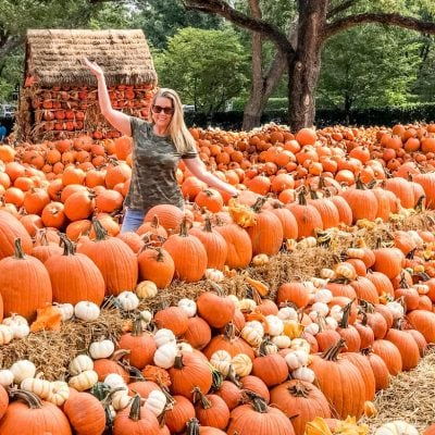 Pumpkin Village at the Dallas Arboretum – Everything You Need to Know Before You Go