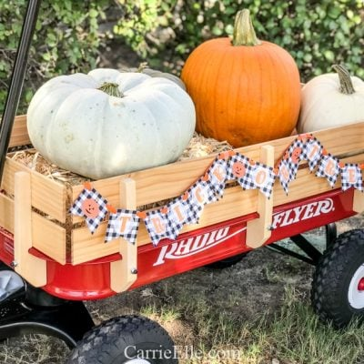 Printable Trick-or-Treat Banner for Radio Flyer Wagon