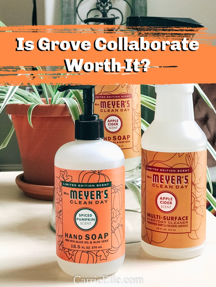 Is Grove Collaborative Worth It?